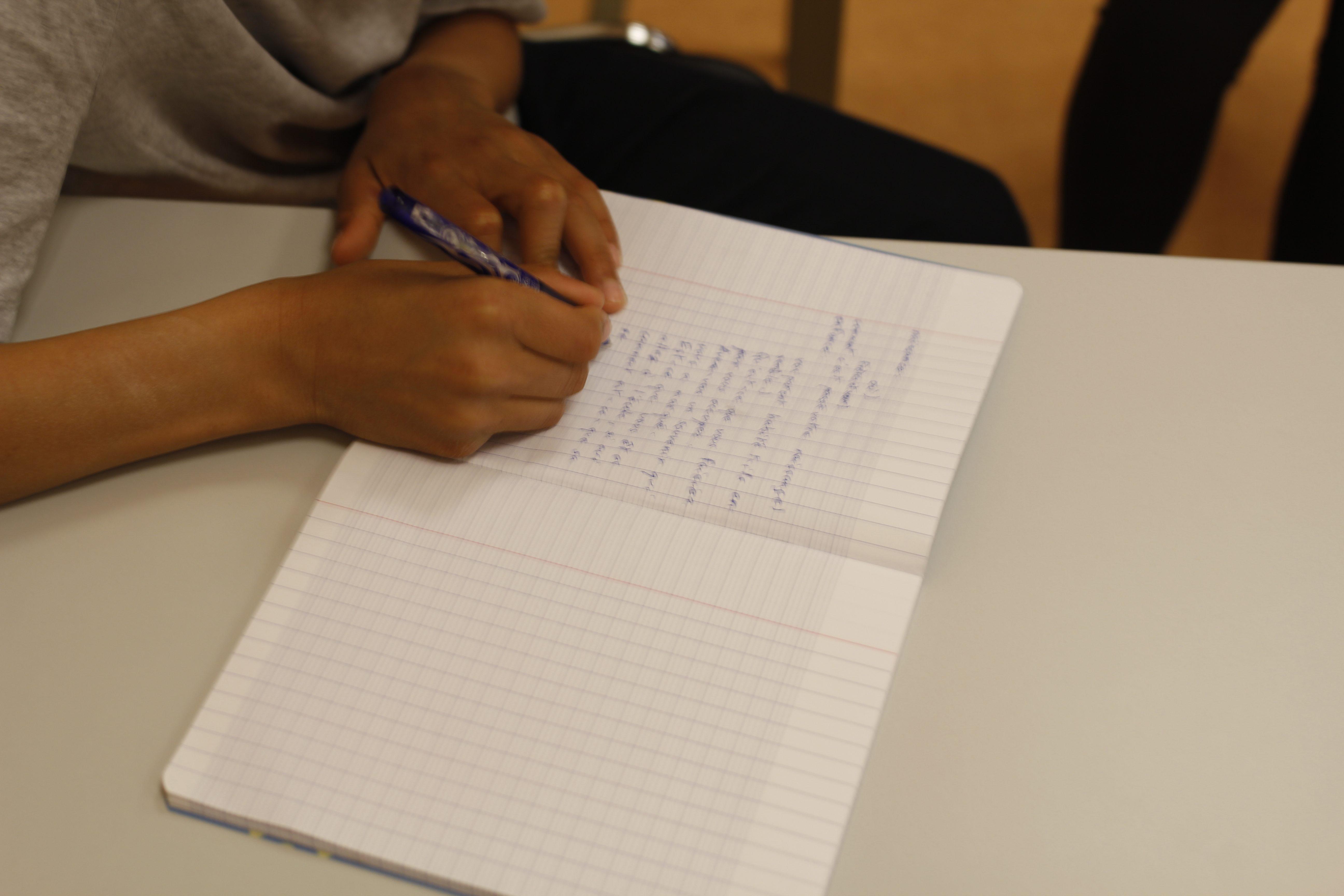 IMLA-5. LES ADOLESCENTS TIENNENT UN CARNET DE BORD DURANT TOUTE L'ACTION. POUR INTERNET